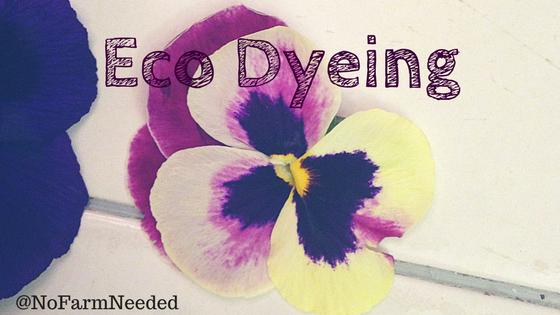Eco Dyeing NoFarmNeeded