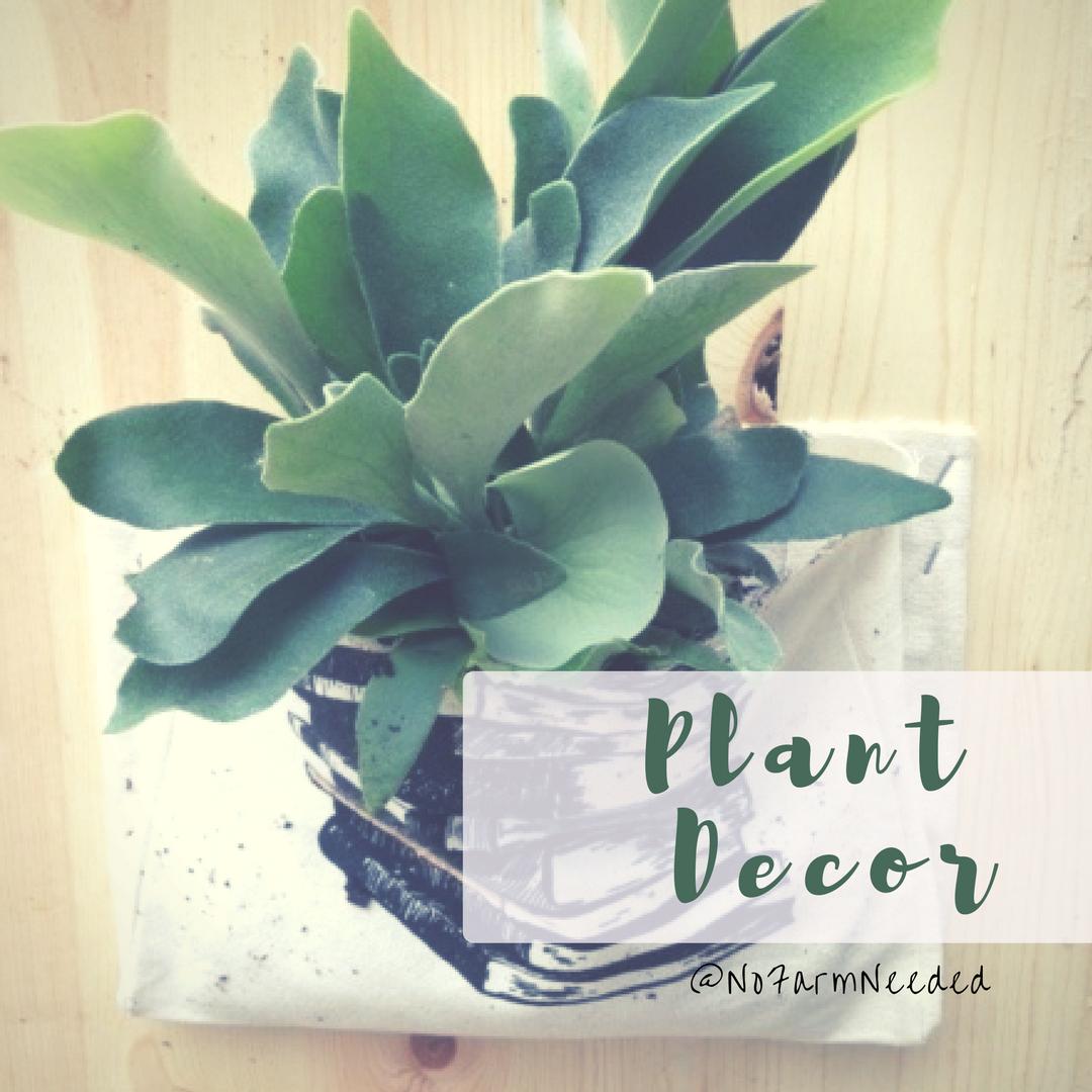 Plant Decor Plant Decor
