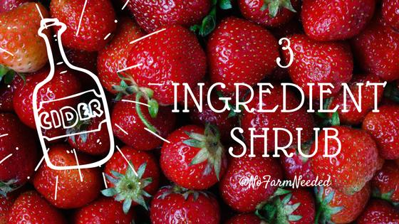 3 ingredient shrub