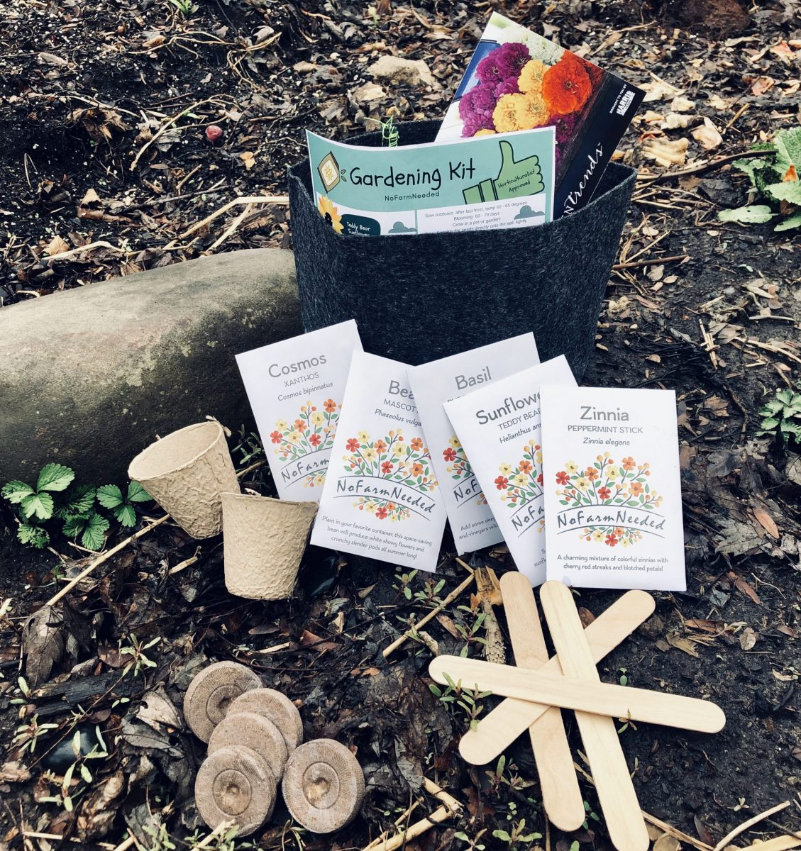 The Best Gardening Subscription Box for Every Season