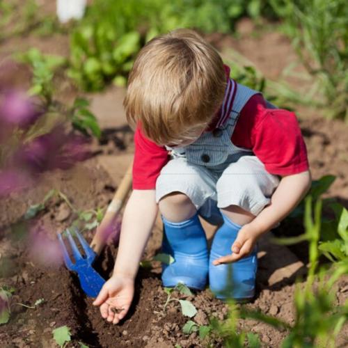 Kid's Gardening Teach your children to garden - Kid's Gardening Kit - NoFarmNeeded