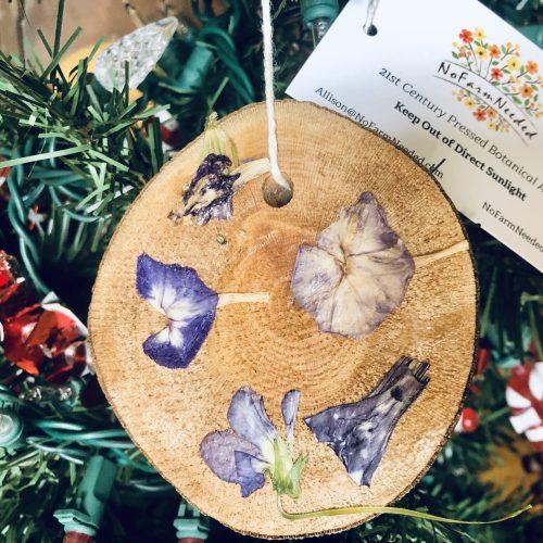 Phlox pressed botanical ornament