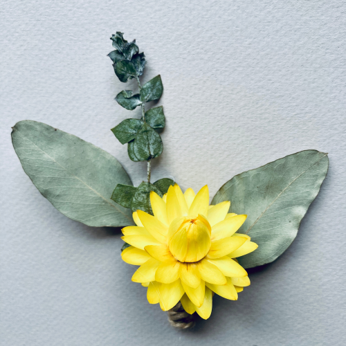 Yellow Dried Botanical Pin 2 NoFarmNeeded