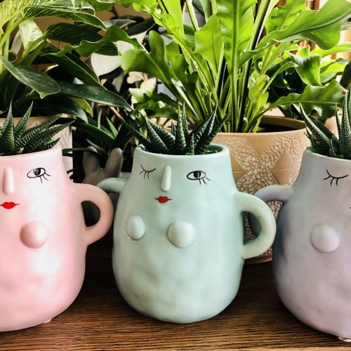 woman empowerment group of succulent planters