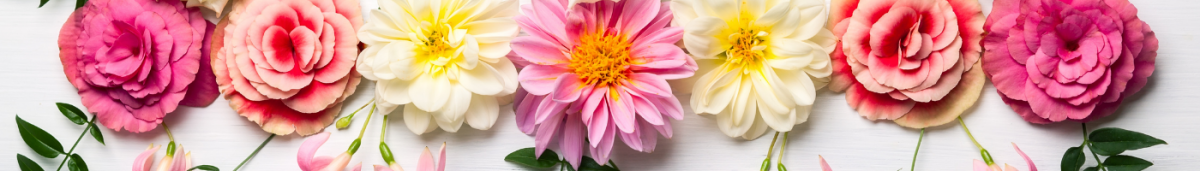 Banner Language of Flowers (1)